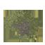 Palo Verde Symbol Style