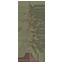 Giant Sequoia Symbol Style