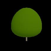 Apricot Symbol Style